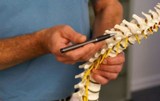 Acupuncture for the Spinal Column | SPORTSMEDICINEACUPUNCTURE.COM