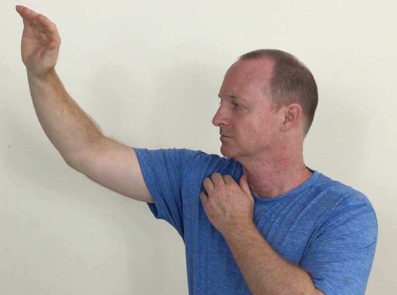 Patient Self-Care for Balancing the Lung Sinew Channel (Jingjin) | SPORTSMEDICINEACUPUNCTURE.COM