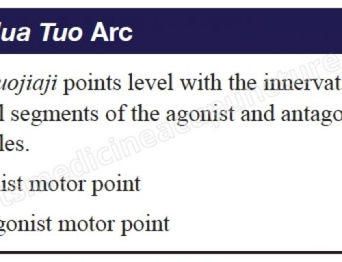 A Case Study Using the Hua Tuo Arc